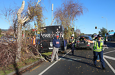 Auckland-Bus collides with tree and cars, Ranui