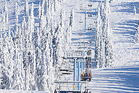"""The """"Blue chair"""" and snow covered trees at Mount Washington.  Comox Valley, British Columbia, Canada."""