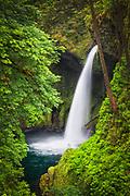 USA, Oregon, Hood River County. Metlako Falls on Eagle Creek in the Columbia River Gorge.
