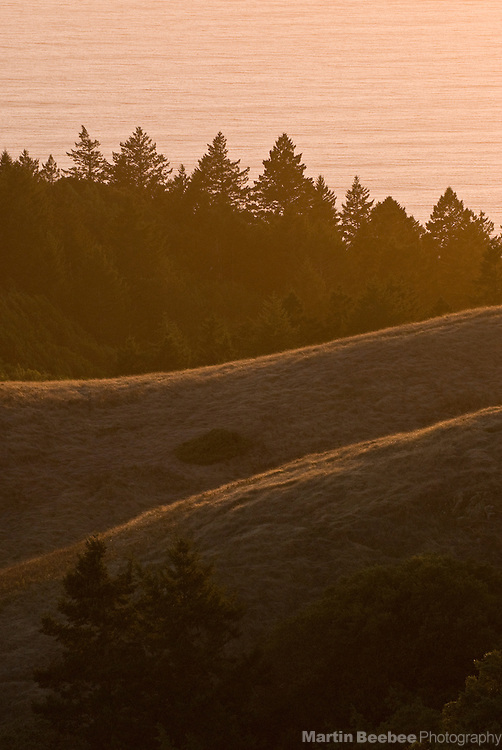 Sunset light on hillsides on the Pacific Ocean, Mount Tamalpais State Park, California