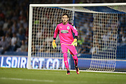 Huddersfield Town goalkeeper, on loan from Liverpool, Danny Ward (1) during the EFL Sky Bet Championship match between Brighton and Hove Albion and Huddersfield Town at the American Express Community Stadium, Brighton and Hove, England on 13 September 2016.