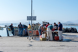 Coquimbo, Chile--April 7, 2018. Men clean and prepare fish in the morning for an outdoor market near the pier. Editorial use only.
