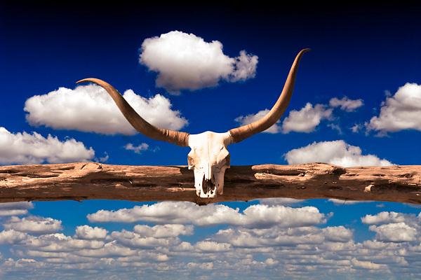 Cow scull adorned gate entrance to a rural central Texas ranch near Blanco, Texas, USA.