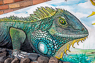Iguana mural by Ernesto Garrigos in the Rio Cuale neighborhood of Puerto Vallarta, Mexico.