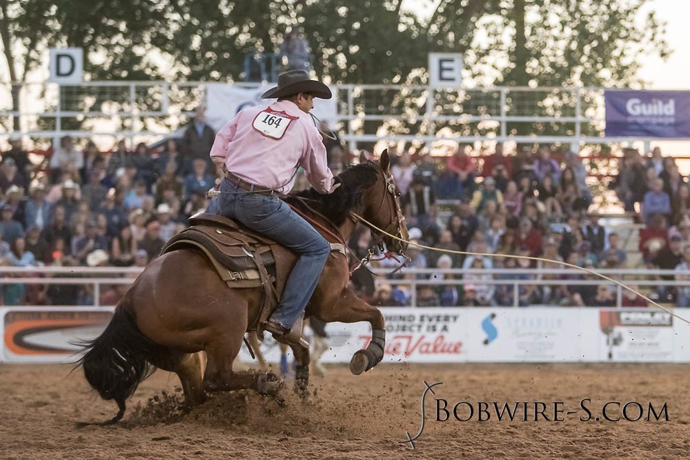 Tie-down roper Wes Mack makes his run during the second performance of the Elizabeth Stampede on Saturday, June 2, 2018.