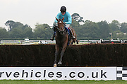 Marie Des Anges, winner of the Aviator Bar and Restaurant Bognor Regis Handicap Chase, ridden by David Noonan at Ladies Day, Fontwell Park Racecourse, Arundel, United Kingdom on 13 August 2015. Photo by Ellie Hoad.