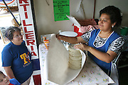 Alma Casales' says her week-size order (for the upcoming photo shoot) of tortillas at the tortillería across the street from her convenience store in Cuernavaca, Mexico is a bit irrational; she never buys tortillas in bulk, because they don't keep well. Hungry Planet: What the World Eats (p. 223).