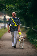 Wearing darkened glasses, unsighted Tim Gutteridge walks along a suburban pavement near to The Guide Dogs for the Blind Association's offices in Reading, England with Lewis, a one year-old Labrador Retriever who has been groomed to become a guide dog. Tim is hoping to forge a strong relationship with his new-found companion who confidently leads the way along the path anticipating and avoiding obstacles and dangers. Animals like Lewis don't start learning with a guide dog trainer until they are 12-15 months old. There are around 5,000 working guide dogs in the UK today, though the Guide Dogs charity care for around 8,000 dogs, including breeding stock, puppies, dogs in training and retired dogs.
