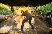 NYBG Halloween Pumpkin Carving