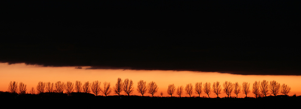 A row of trees below a large dark cloud after sunset // Een grote donkere wolk boven een rij bomen na zonsondergang.