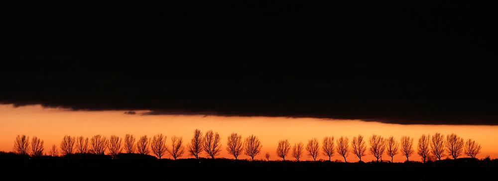 A row of trees below a large dark cloud after sunset // Een grote donkere wolk boven een rij bomen na zonsondergang.