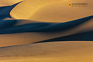 Shadow play in the sand at Mesquite Sand Dunes in Death Valley National Park, California, USA