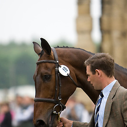 Andrew James  and Cadoc Z at Bramham Horse Trials 2010 competing in the CCI***