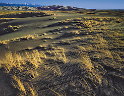 Scene looking across brown sands and grasses of Baca Grant Ranch toward Great Sand Dune national Park in background