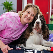 The photography was made during the 2015 Engliish Springer Spaniel Field Trial Association (ESSFTA) Breeders Showcase. The event took place, Friday, September 26th, at Purina Farms, in Gray Summit, MO.