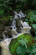 Kamapuaa Falls, Kauai<br />
