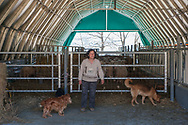Illica, 13/04/2017: Sandra, socia della Cooperativa Agricola Rinascita 78, in un capannone stalla della Regione Lazio.<br /> &copy; Andrea Sabbadini