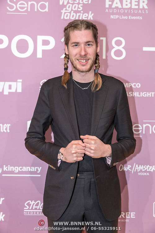 NLD/Amsterdam/20180213 - Edison Pop Awards 2018, Frank van der Lende
