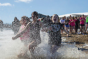 Sisters of Delta Zeta run into Lake Snowden during the Polar Plunge on February 13, 2016. Photo by Emily Matthews