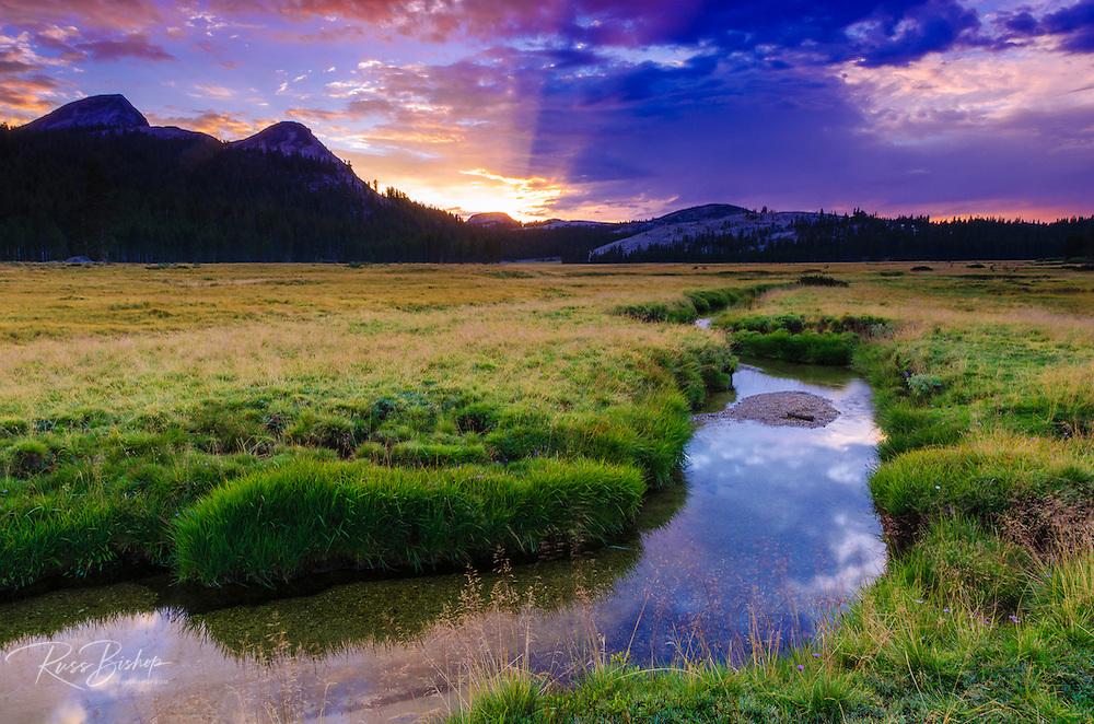 Sunset over Tuolumne Meadows along Budd Creek, Yosemite National Park, California USA