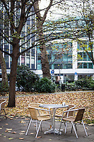 Chairs and coffee table with autumnal leaves in background