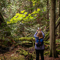 A woman photographing the forest with a smartphone in Jones Island Marine State Park in the San Juan Islands of Washington State.