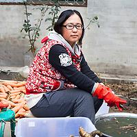 GAOBEIDIAN, 7.NOV. 2014 : Wu Koutian , eine ehemalige Studentin aus Shenyang, putzt Gemuese, das in der Stadt Peking verkauft wird.