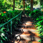 Stairs that take you to the top of Huntington Falls at Stow Lake in Golden Gate Park.