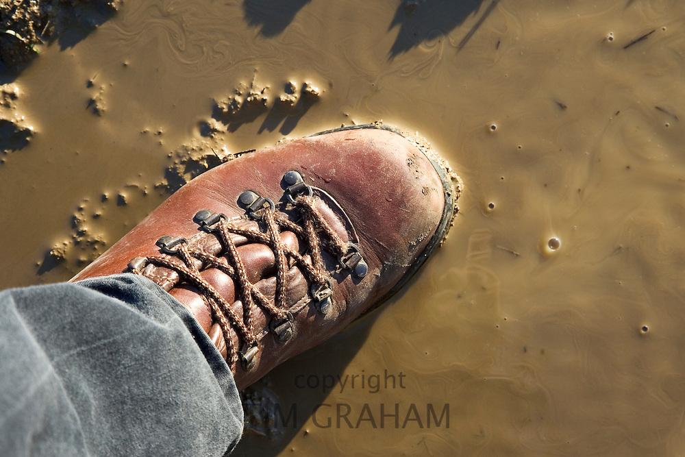 Walker steps in muddy puddle, Oxfordshire, United Kingdom