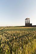 Felder und Flurkapelle bei Bödigheim, Odenwald, Baden-Württemberg, Deutschland | Fields and meadows chapel at Bödigheim, Odenwald, Baden-Württemberg, Germany