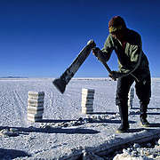 Works of extracion of blocks of salt realized by Inocencio Flores.  Salar de Uyuni ( Uyuni salt flat ) . Department  of Potosí  ( Los Lipez).  South West  Bolivia. <br /> Adult Altiplano America Andes Arid  Aridity Axe Barren  Bicycle Block  Bolivia Cleaver Color Colour Cone  Day Daytime  Department  Desert Desolate Desolation Dry  Exterior Extraction  Geography Hack Hard Hatchet  Heat Highlands  Horizon Horizontal Human  Latin America Lake  Los Lipez Male Man Men Miner Mining Nature  Resource  Natural  One Outdoors Outside  Pan People  Person Pyramide Potosí  Production  Region Resource Rural Salar de Uyuni  Salt Flat  Salt Pan  Salt lake  Scenic Seasoning  Single Shape South America  Southwest  Sud Sunglasses  Surface Travel  West White Work  Worker Working