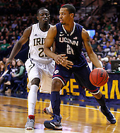 SOUTH BEND, IN - JANUARY 12: Omar Calhoun #21 of the Connecticut Huskies dribbles past Jerian Grant #22 of the Notre Dame Fighting Irish at Purcel Pavilion on January 12, 2012 in South Bend, Indiana. Connecticut defeated Notre Dame 65-58. (Photo by Michael Hickey/Getty Images) *** Local Caption *** Omar Calhoun; Jerian Grant