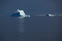 Icebergs catch morning light in the Gerlache Strait, Antarctica.