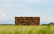 Bales of hay, Marana, Arizona, USA.