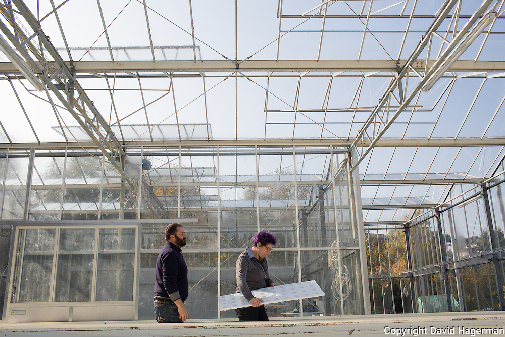 Partners Alessandro Piana and Enrica Gherpelli of La Rienca work in their newly constructed green house designed to grow flowers (for the production of saffron) and basil using aeroponics.