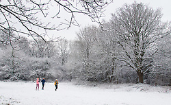 Hampstead Heath, London, January 17th 2016. Runners and dog walkers enjoy the early morning snow on Hampstead heath in London, where about an inch-and-a-half fell overnight. PICTURED: Three runners enjoy the fresh snow on Hampstead Heath. ///FOR LICENCING CONTACT: paul@pauldaveycreative.co.uk TEL:+44 (0) 7966 016 296 or +44 (0) 20 8969 6875. ©2015 Paul R Davey. All rights reserved.