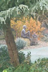 View through Cedrus deodora towards 'Boy on a Rock' bronze statue by Jane Hogben.