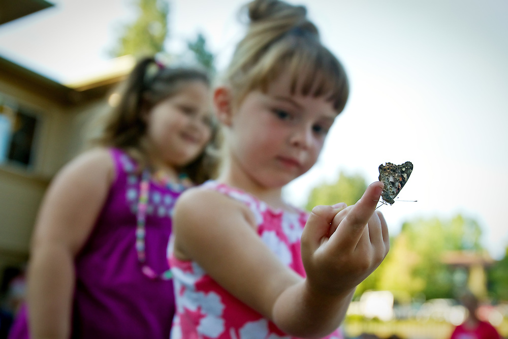 Reese Vernon, 4, observes one of the 300 butterflies that were released at Coeur d'Alene Homes.