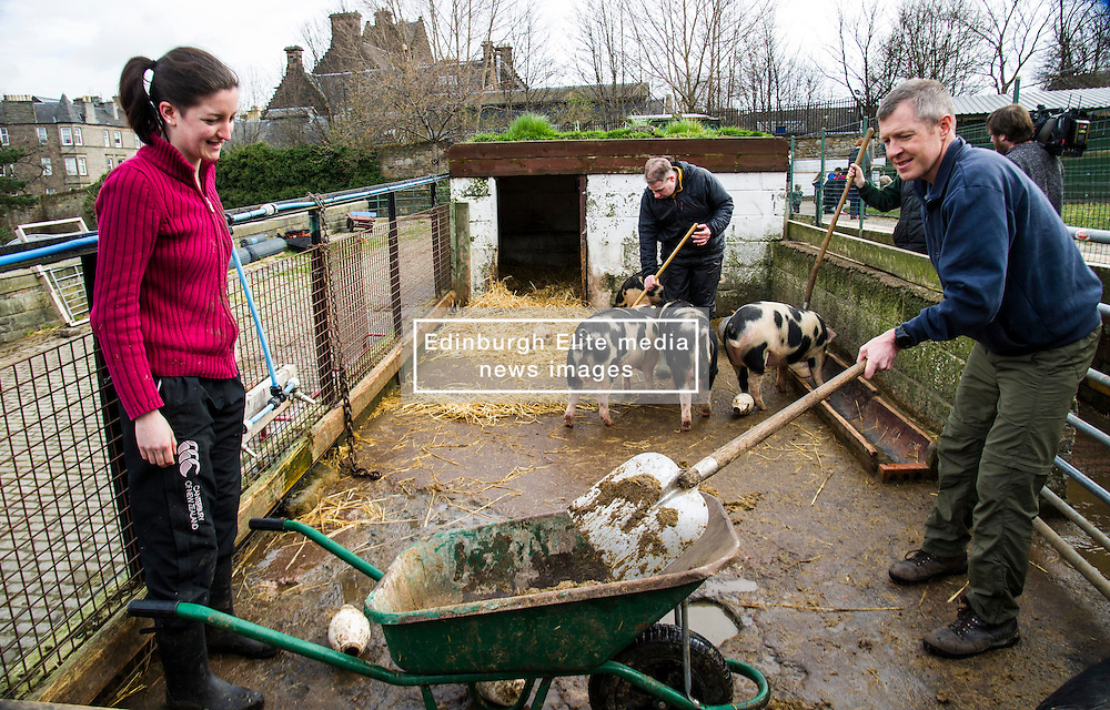 Pictured: Mr Rennie helped Leah Muirhead and Graham Mathieson clean out the pen shared by Gloucestershire Old Spots and Berkshire boars.<br /> Scottish Liberal Democrat leader Willie Rennie called for a boost to vocational training opportunities when he met volunteers, Leah Muirhead and Graham Mathieson, at Gorgie City Farm in Edinburgh. After touring the farm, which provides volunteering and training opportunities for at-risk young people and adults with additional support needs, Mr Rennie set out Lib Dem plans to increase opportunities for industry-recognised vocational qualifications.  <br /> Ger Harley | EEm 8 April 2016