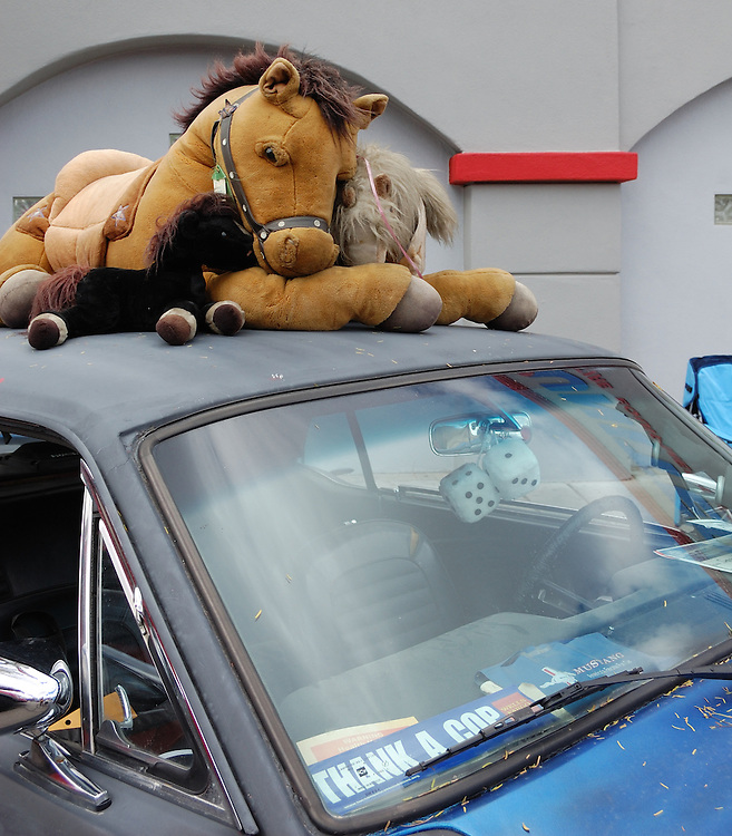 Horsepower of the stuffed animal variety at Fords on Fourth on Tucson's 4th Avenue.
