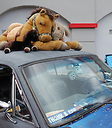 Horsepower of the stuffed animal variety at Fords on Fourth on Tucson's 4th Avenue. Event photography by Martha Retallick.