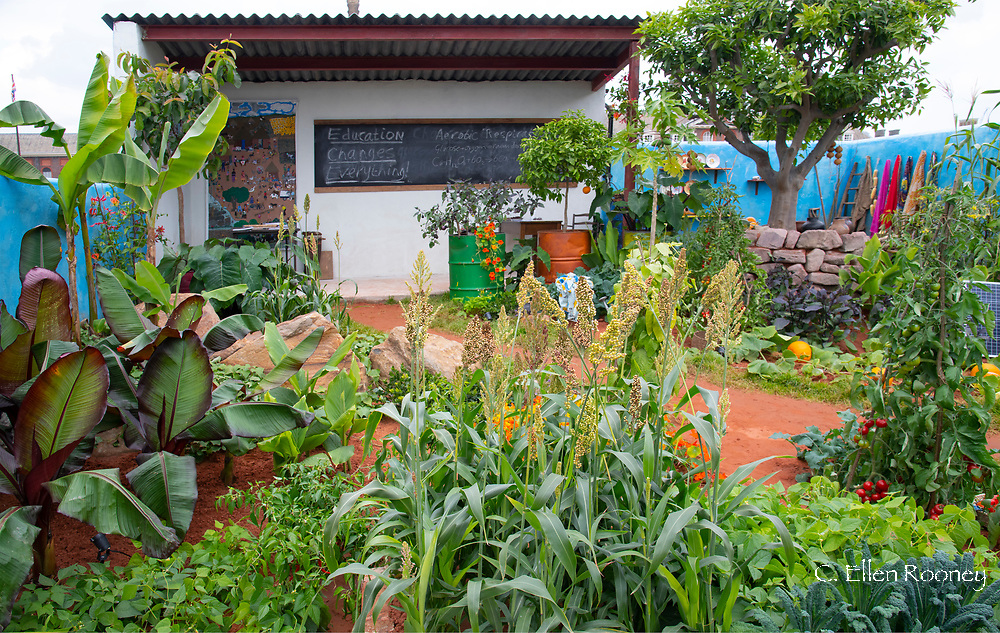 The Camfield Garden: Giving Girls in Africa a Space to Grow in the Space to Grow category at RHS Chelsea Flower Show 2019, London, UK