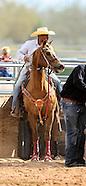 AZ Black Rodeo 2014