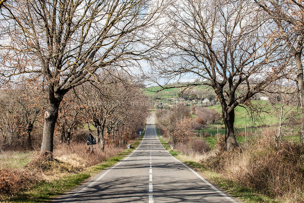 17 February 2017, AQ Italy - Country road in a south of Tuscany.