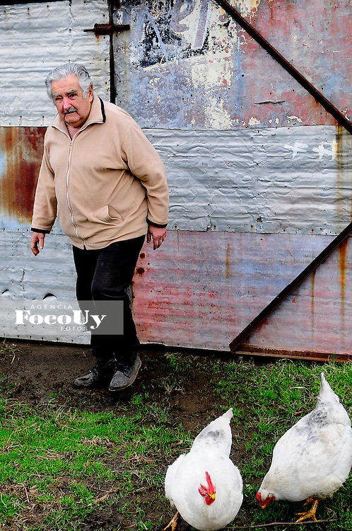 Montevideo, Uruguay.9 de Mayo. El ex Presidente josé Mujica en su chacra, fotos de archivo . Montevideo, Uruguay. Foto: María Inés Hiriart