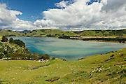 Lush rolling green hills at Papanui Inlet, Otago Peninsula, New Zealand