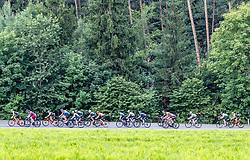 09.07.2019, Kirchschlag, AUT, Ö-Tour, Österreich Radrundfahrt, 3. Etappe, von Kirchschlag nach Frohnleiten (176,2 km), im Bild Peloton // Peloton during 3rd stage from Kirchschlag to Frohnleiten (176,2 km) of the 2019 Tour of Austria. Kirchschlag, Austria on 2019/07/09. EXPA Pictures © 2019, PhotoCredit: EXPA/ Johann Groder