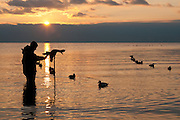 Diver hunting, Lake St. Clair, Michigan