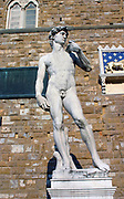 Copy of Michelangelo's (1475-1564) statue of David in the Piazza della Signoria, Florence, Italy. Male Nude