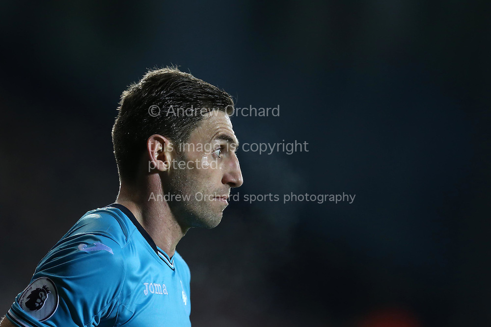 Angel Rangel of Swansea city looks on . Premier league match, West Bromwich Albion v Swansea city at the Hawthorns stadium in West Bromwich, Midlands on Wednesday 14th December 2016. pic by Andrew Orchard, Andrew Orchard sports photography.
